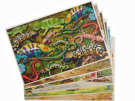 Jigsaw puzzle store - a home for 10 jigsaws