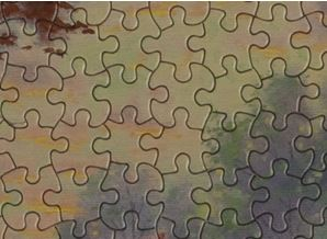 Puzzle that has Fascinating Pieces