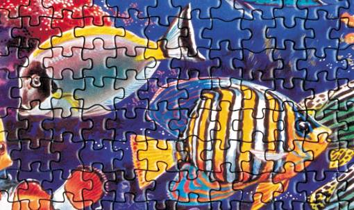 Jigsaw Puzzle by Educa