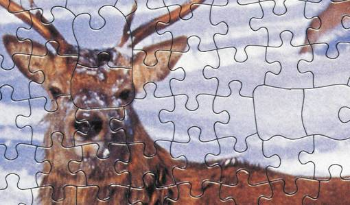 Jigsaw Puzzle by The House of Puzzles